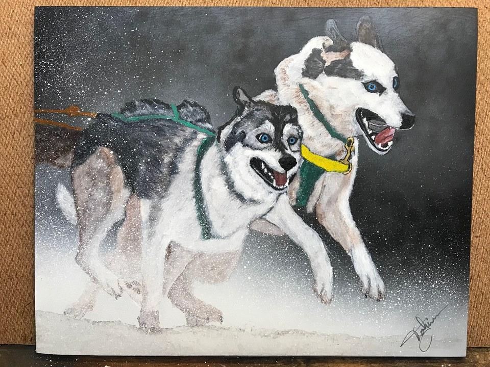 Northern Lights Dog Rescue